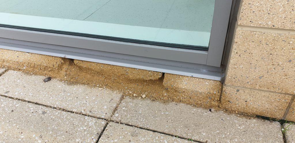 rising damp in external wall