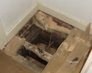 woodworm damage to floor